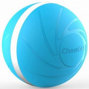 Blue Wicked Ball
